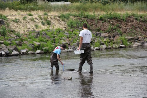 interns monitor water quality